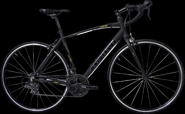 Tommaso Fascino Sport Performance Aluminum Road Bike