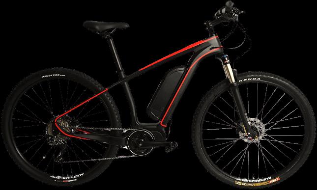 Stradalli Cycle Carbon Fiber 29er MTB EBike