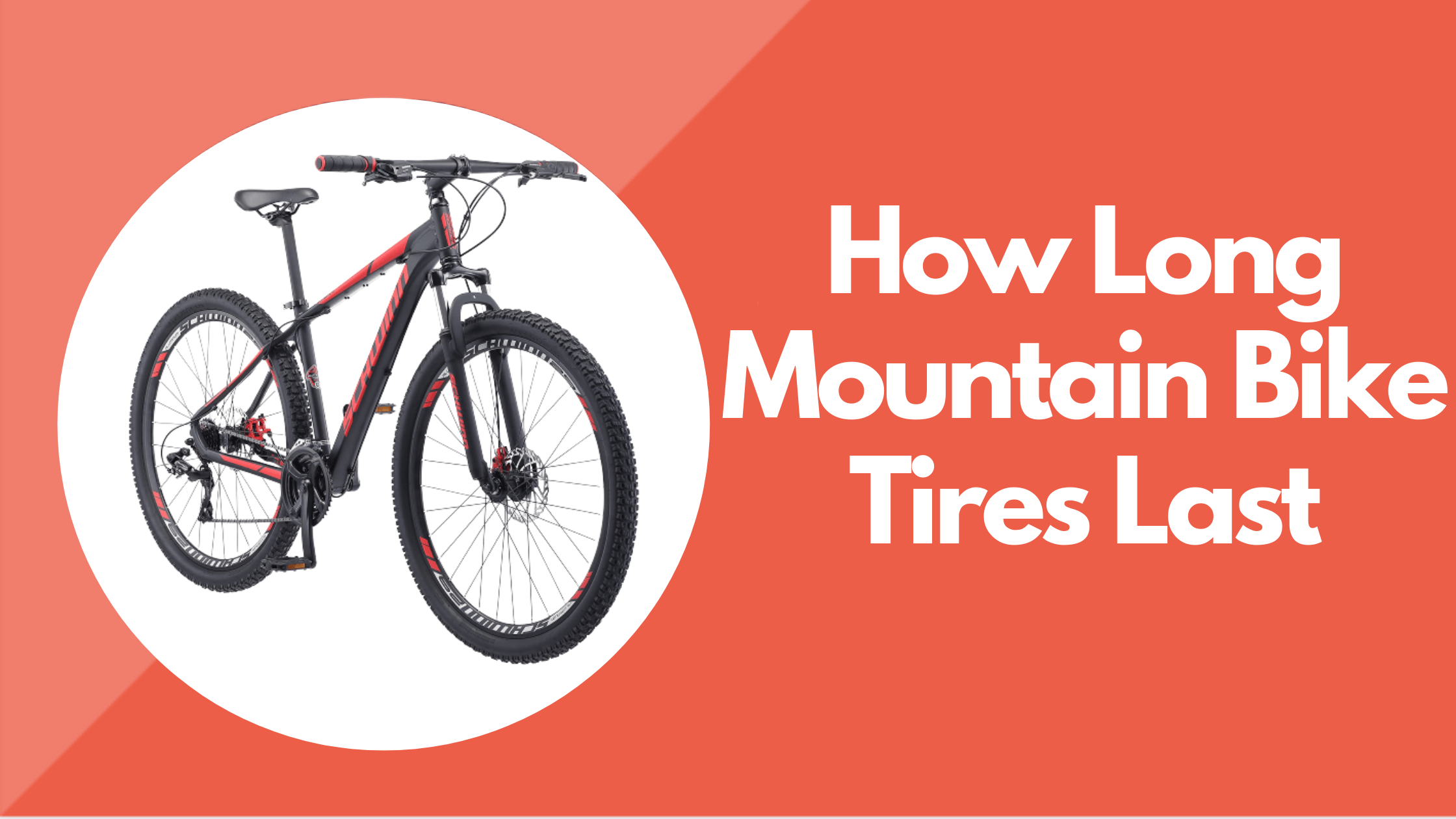 How Long Mountain Bike Tires Last
